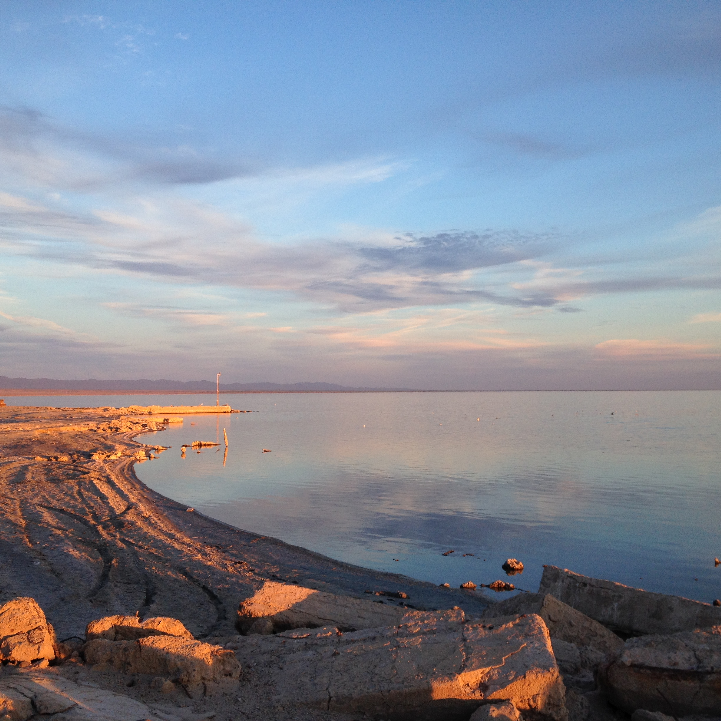 Enjoy a holiday full of death and decay at Salton Sea | Route nach ...